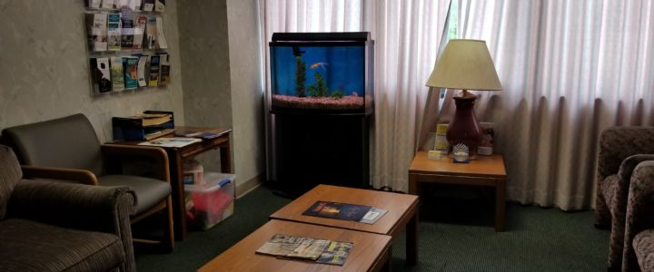 Three Most Common Causes of Aquarium Maintenance Business Failure